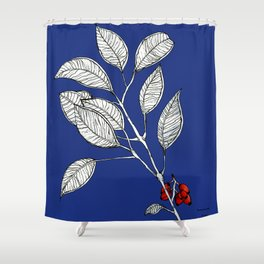 lomboy blue Shower Curtain
