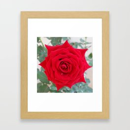 ONE & ONLY YOU Framed Art Print