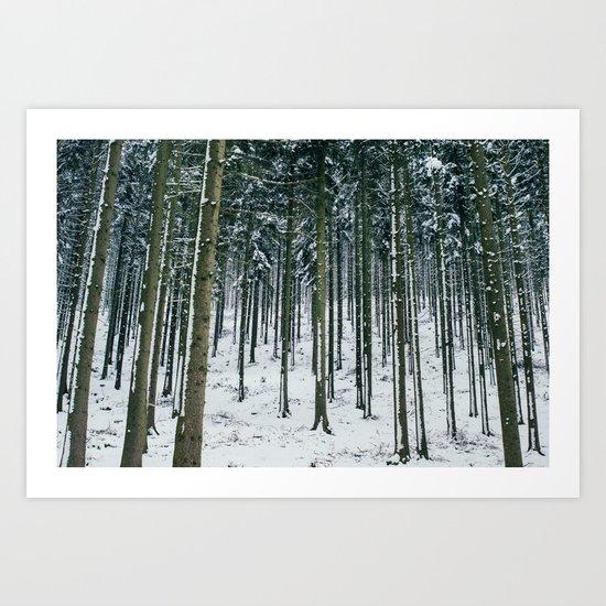 Winter Forest Treescape Art Print