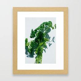 Herbal Framed Art Print