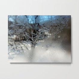 The Mountain Feathers Metal Print
