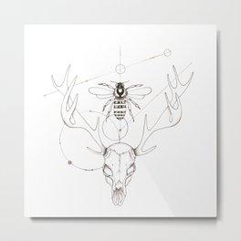 Stellar Skull Metal Print