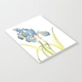 Watercolor flower Iris Siberica Notebook