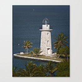 Coral Light C Canvas Print