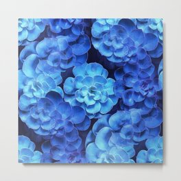 Succulent Plants In Blue Tones #decor #society6 #homedecor Metal Print