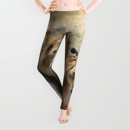 Lion_20180704_by_JAMFoto Leggings