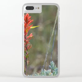 Lone Indian Paintbrush Clear iPhone Case