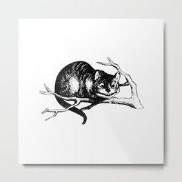 Alice in Illustration C15 Wonderland Cheshire Cat Print Metal Print