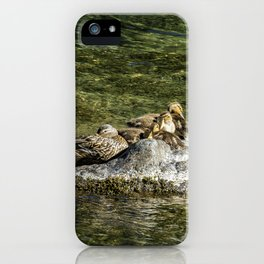 We're Supposed To Be Napping iPhone Case