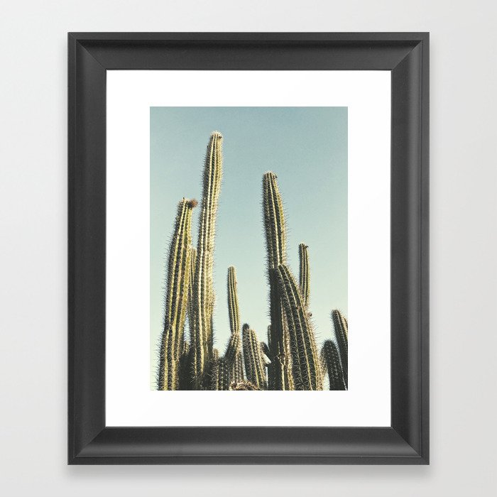 Desert Cactus Gerahmter Kunstdruck