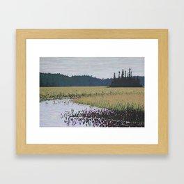 The Grassy Bay, Algonquin Park Framed Art Print