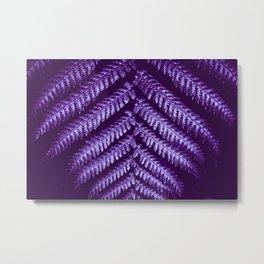 purple fern Metal Print