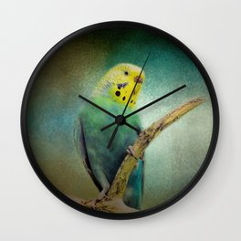 The Budgie Collection - Budgie 1 Wall Clock