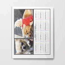 Chihuahua calendar 2017 Metal Print