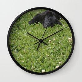 Delightful Wall Clock