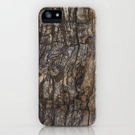 Bark VII iPhone Case