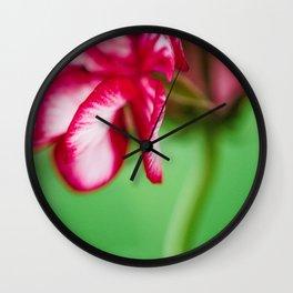 Geranium 4 Wall Clock