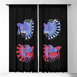 Two crowntail bettas Blackout Curtain