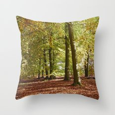 Autumnal beech trees in a natural woodland. Norfolk, UK. Throw Pillow