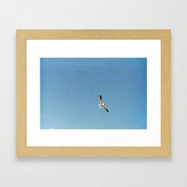 Flyer Higher Framed Art Print