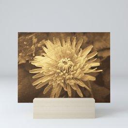 Spring flower. Mini Art Print