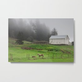 White Barn On A Foggy Morning Metal Print