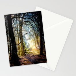 Early morning in the New Forest. Stationery Cards