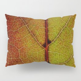 Fall Colors In Southern California Pillow Sham