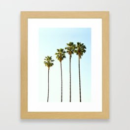 Four Palm Trees Framed Art Print