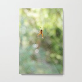 Spider in spiderweb Metal Print