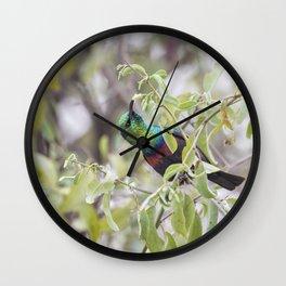 Marico Sunbird Wall Clock