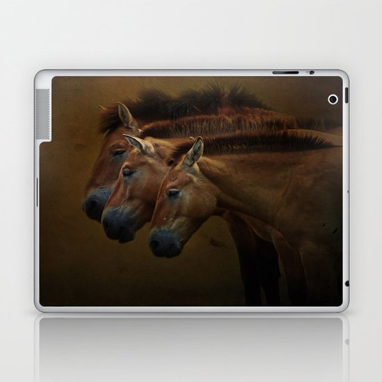 Three Amigos Laptop & iPad Skin