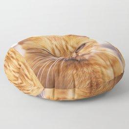 Pissed Ginger Floor Pillow