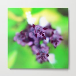 Untitled (Flowers) Metal Print