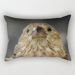 Sweet House Finch Rectangular Pillow