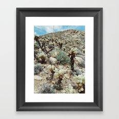 Mountain Cholla Framed Art Print