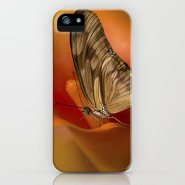 Dryas iulia butterfly sitting on orange calla lily flower iPhone Case