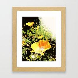 Hana Collection - California Poppy Framed Art Print