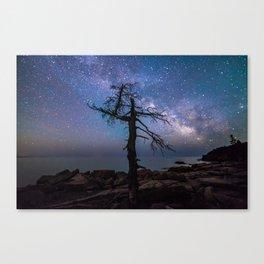 Ocean Drive Night Canvas Print