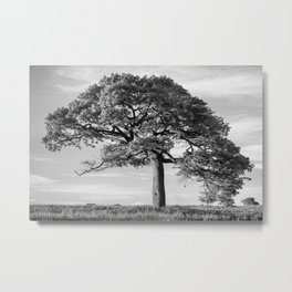 The Tree (Black and White) Metal Print