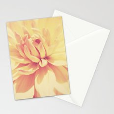 Lush. Stationery Cards