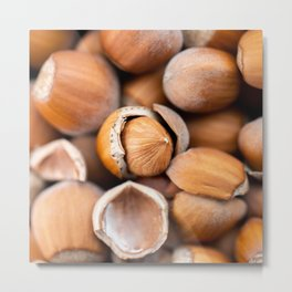 Hazelnuts close-up in the shell. Nuts are a beautiful background. Macro shot of hazelnuts. Food conc Metal Print