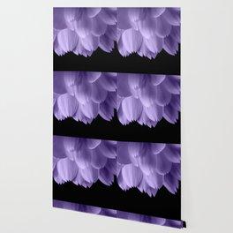 Ultra violet purple flower petals black Wallpaper