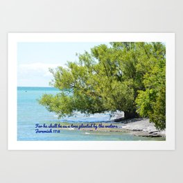 Tree By The Water With Scripture Quote Art Print