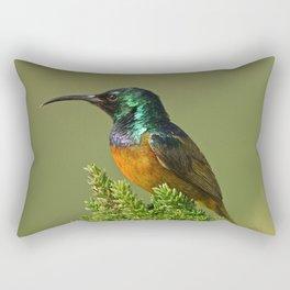 Orange Breasted Honey Bird Rectangular Pillow