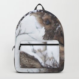 Watercolor Elk Calf 07, Estes Park, Colorado, Dry Gulch Snow Baby Backpack