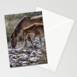 Salt River Mare and Her Colt, No. 2 Stationery Cards