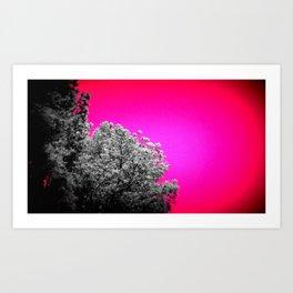 Gray Trees Hot Pink Sky Art Print