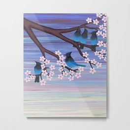 Steller's jays and cherry blossoms Metal Print