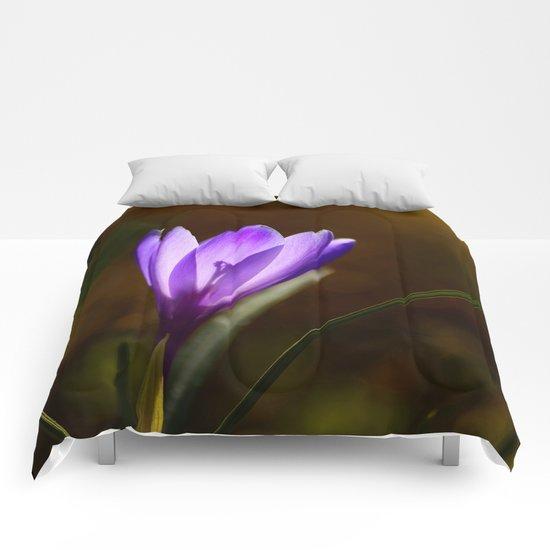 Bright Purple Spring Crocus Comforters